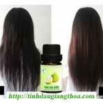 Tác dụng kích thích mọc tóc hiệu quả của tinh dầu bưởi