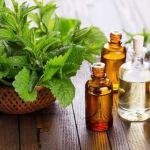 Hướng dẫn cách sử dụng tinh dầu nguyên chất hiệu quả