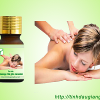 tinh-dau-massage-thu-gian-lavender