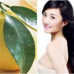 Tinh dầu Bưởi nguyên chất trị rụng tóc, hói đầu hiệu quả