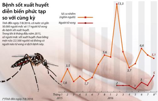 Bệnh sốt xuất huyết nguy hiểm và có khả năng lây lan rất nhanh