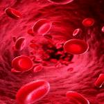 Khi bị mắc sốt xuất huyết sẽ bị giảm tiểu cầu nên rất nguy hiểm