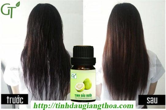 Tinh dầu bưởi GT giúp tóc tọc dày hơn sau 2 tháng sử dụng