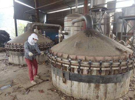 Tinh dầu quế được sản xuất bằng phương pháp chưng cất hơi nước