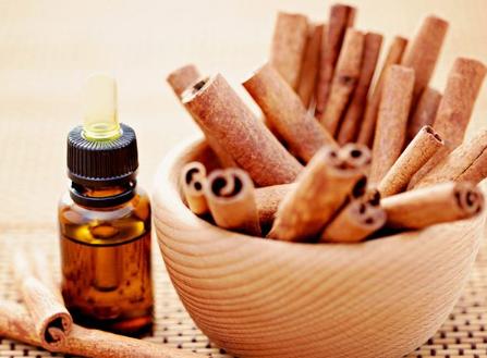 Tinh dầu quế có nhiều tác dụng cực tốt được nhiều người yêu thích sử dụng